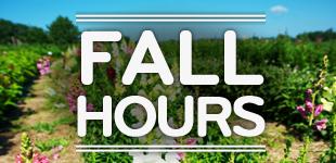 fall_HOURS